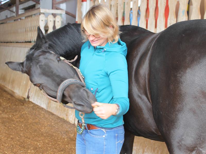 Karotten-Übung - Physiotherapeut für Pferde